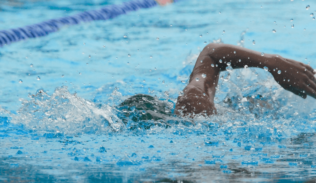 Why A Screened In Pool Is The Best Safety Barrier For Your Backyard Swim.